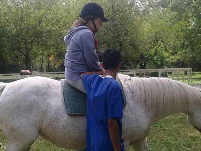 aupa-caballos